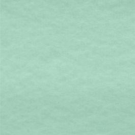 Polar Antartica Liso Verde Menta | La Parisina