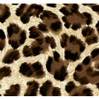Polar Flannel Leopardo Café
