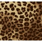 Polar Flannel Leopardo Café Beige