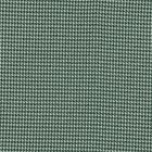 Pata De Gallo Liso Verde Bandera
