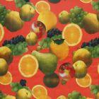 Plastico Charomesa Frutas Temporada Naranja