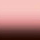 Shiffon Pegasus Degradado Cenefa Sencilla Rosa Palo
