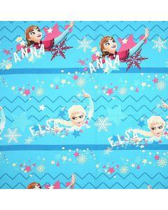 Decoracion Canasta Disney Frozen Estrellas Azul Cielo